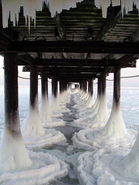 muelle congelado