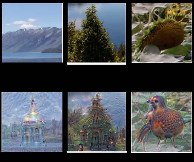 interpretaciones de fotos por un ordenador