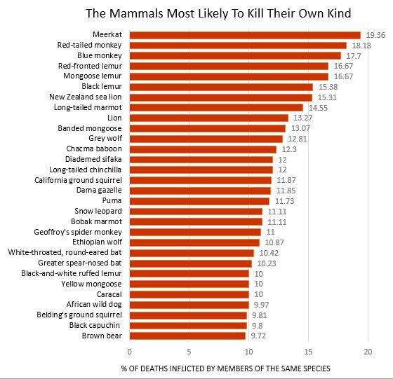 lista de animales mortiferos