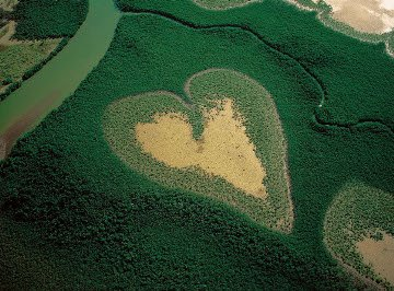 corazon gigante 7